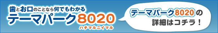 テーマパーク8020
